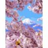 Горная весна Раскраска картина по номерам на холсте
