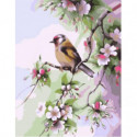 Весенняя пташка Раскраска картина по номерам на холсте
