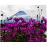 Цветочный восторг Раскраска картина по номерам на холсте