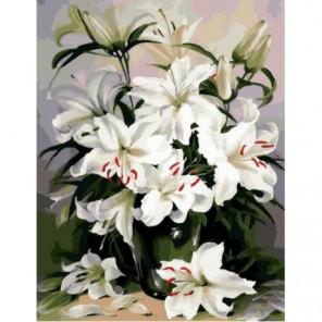 Чистота лилий Раскраска картина по номерам на холсте