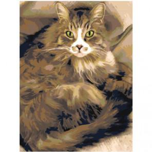 Пушистая кошка 60х80 Раскраска картина по номерам на холсте