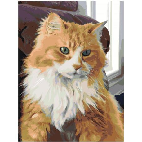 Рыжая кошка Раскраска картина по номерам на холсте