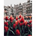 Городские тюльпаны Раскраска картина по номерам на холсте