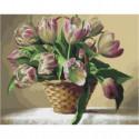 Корзина тюльпанов Раскраска картина по номерам на холсте