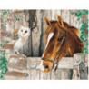 Лошадь и сова Раскраска картина по номерам на холсте