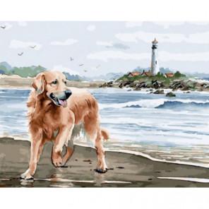 Радостный пес у берега Раскраска картина по номерам на холсте