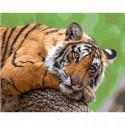 Задумчивый тигр Раскраска картина по номерам на холсте