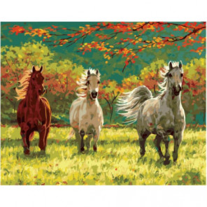 Тройка лошадей на солнечной поляне Раскраска картина по номерам на холсте