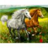 Бегуны на маковом поле Раскраска картина по номерам на холсте