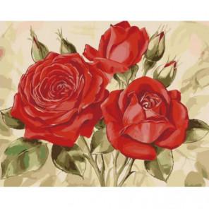 Три идеальные розы Раскраска картина по номерам на холсте