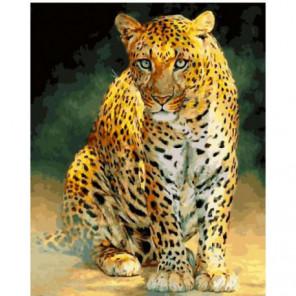 Южноаравийский леопард Раскраска картина по номерам на холсте
