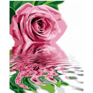 Отражение розы Раскраска картина по номерам на холсте