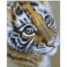 Очаровательный тигренок Раскраска картина по номерам на холсте