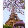 Очарование Парижа Раскраска картина по номерам на холсте