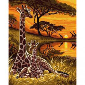 Жираф и мама Раскраска картина по номерам на холсте