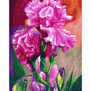 Розовые ирисы Раскраска картина по номерам на холсте