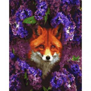 Лис в сирени Раскраска картина по номерам на холсте
