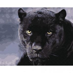 Пантера Раскраска картина по номерам на холсте