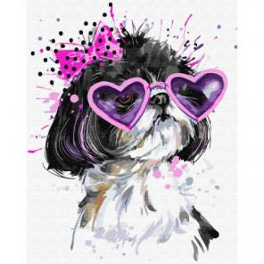 Собачка в розовых очках Раскраска картина по номерам на холсте