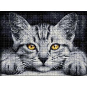 Желтоглазый котёнок Алмазная вышивка мозаика АЖ-1807