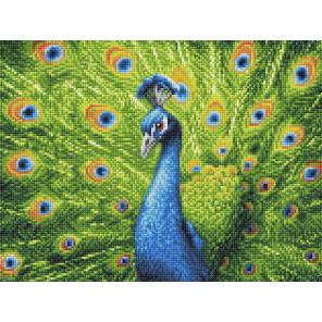 Красавец павлин Алмазная вышивка мозаика АЖ-1801