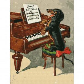 Собачий вальс Картина по номерам на холсте с цветной схемой KK0045