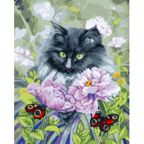 Любуясь бабочками Раскраска картина по номерам на холсте CG467