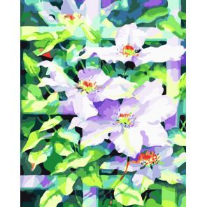 Цветы под солнцем Раскраска картина по номерам на холсте CG481