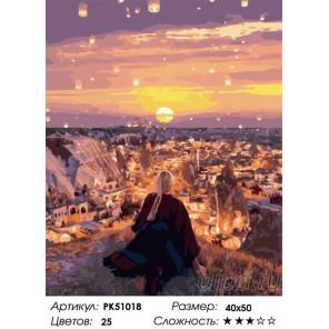 Сложность и количество цветов Небесные огоньки Раскраска картина по номерам на холсте PK51018