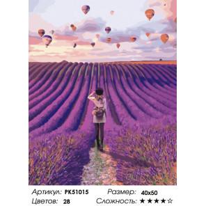 Сложность и количество цветов Воздушные шары над лавандовым полем Раскраска картина по номерам на холсте PK51015