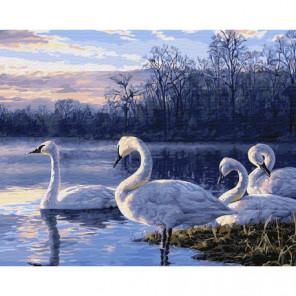 Пейзаж с лебедями Раскраска картина по номерам на холсте