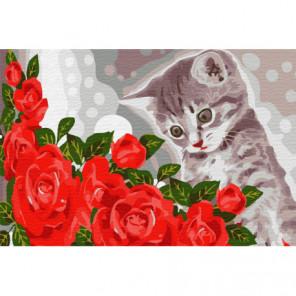 Котёнок и розы Раскраска картина по номерам на холсте