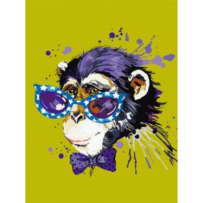 Disco Monkey Раскраска картина по номерам на холсте ME1119