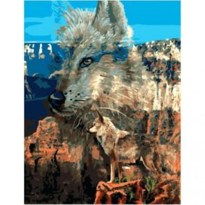 Волк в каньоне Раскраска картина по номерам на холсте