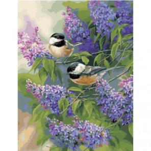 Птички на кустах сирени Раскраска картина по номерам на холсте