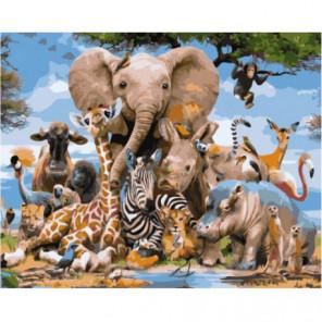 Разнообразие животного мира Раскраска картина по номерам на холсте