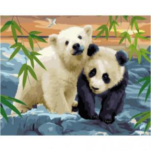 Панда и белый мишка Раскраска картина по номерам на холсте