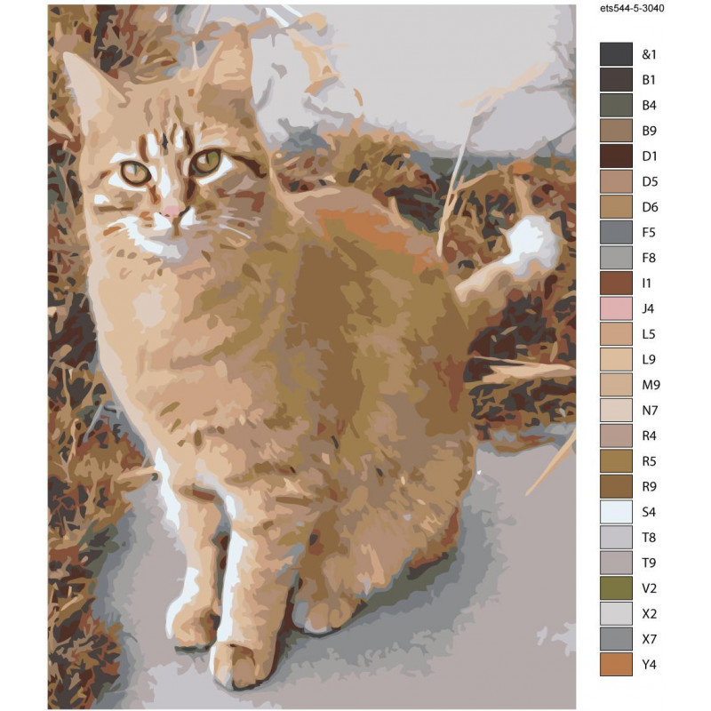 Рыжая кошка Раскраска картина по номерам на холсте ets544 ...