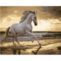 Ретивый конь Раскраска картина по номерам на холсте