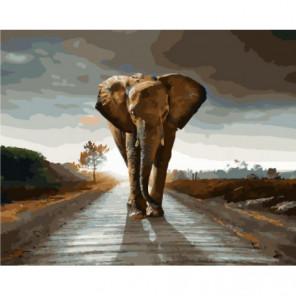 Мощь слона Раскраска картина по номерам на холсте