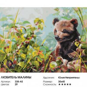 Сложность и количество цветов Любитель малины Раскраска картина по номерам на холсте 338-AS