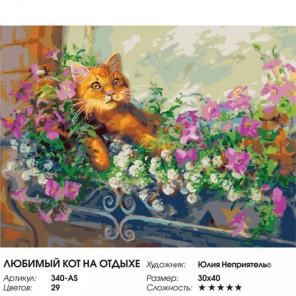 Сложность и количество цветов Любимый кот на отдыхе Раскраска картина по номерам на холсте 340-AS
