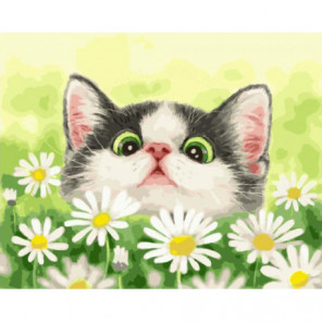 Котенок в ромашках Раскраска картина по номерам на холсте