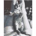 Игривый серый котенок 80х100 Раскраска картина по номерам на холсте