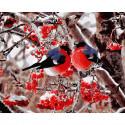 Снегири Картина по номерам на дереве KD0618
