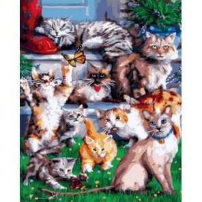 Котейки Раскраска картина по номерам на холсте GX33767