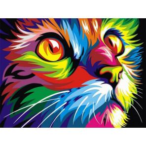 Радужный кот Раскраска картина по номерам на холсте EX6309
