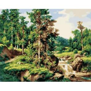 Сосны Раскраска картина по номерам на холсте PK59013