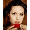 Анджелина Джоли Раскраска картина по номерам на холсте МСА615