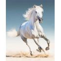 Белая лошадь Алмазная мозаика на подрамнике LG192